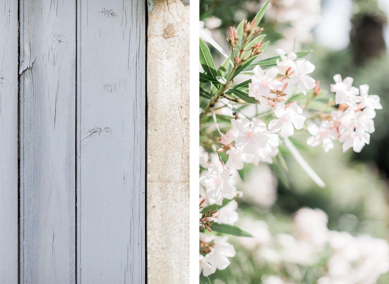 Photographie de Mathieu Dété, photographe de mariage à Saint-Pierre de la Réunion (974), présentant les détails d'une porte et des fleurs de la Villa Brignac