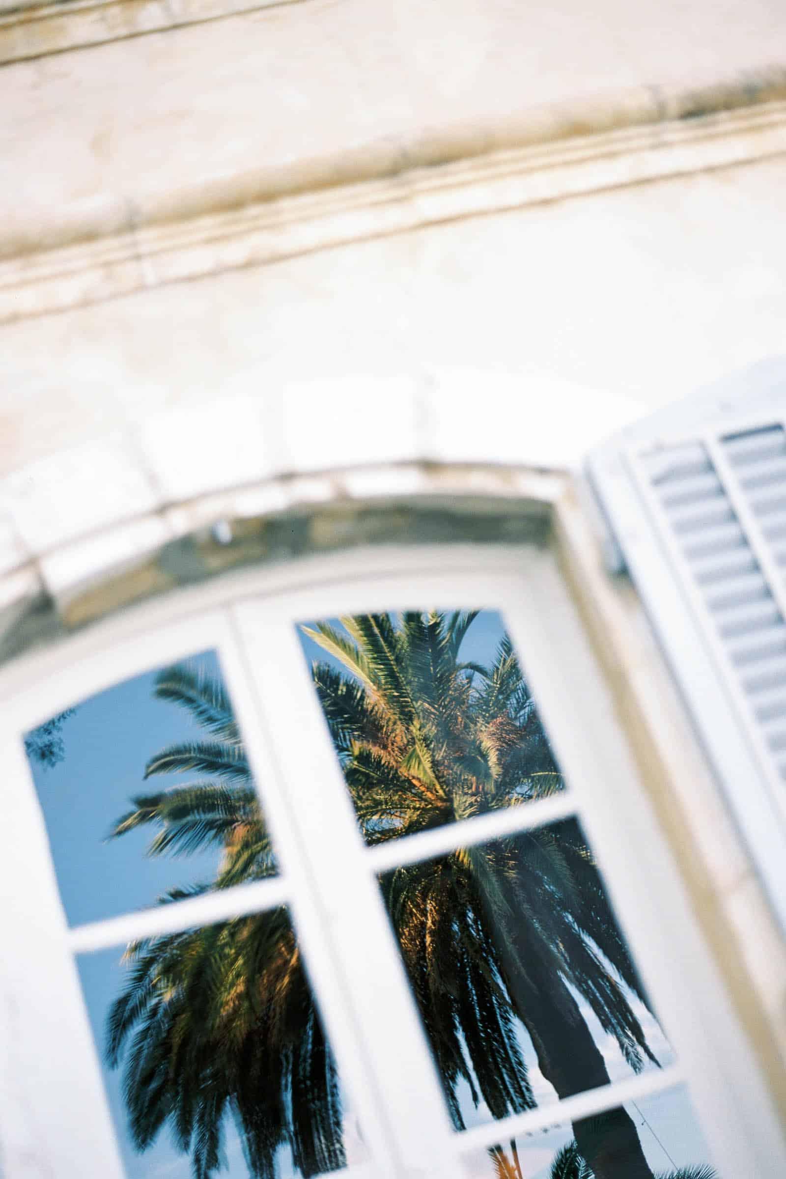 Photographie de Mathieu Dété présentant le reflet d'un palmier dans la fenêtre de la Villa Brignac