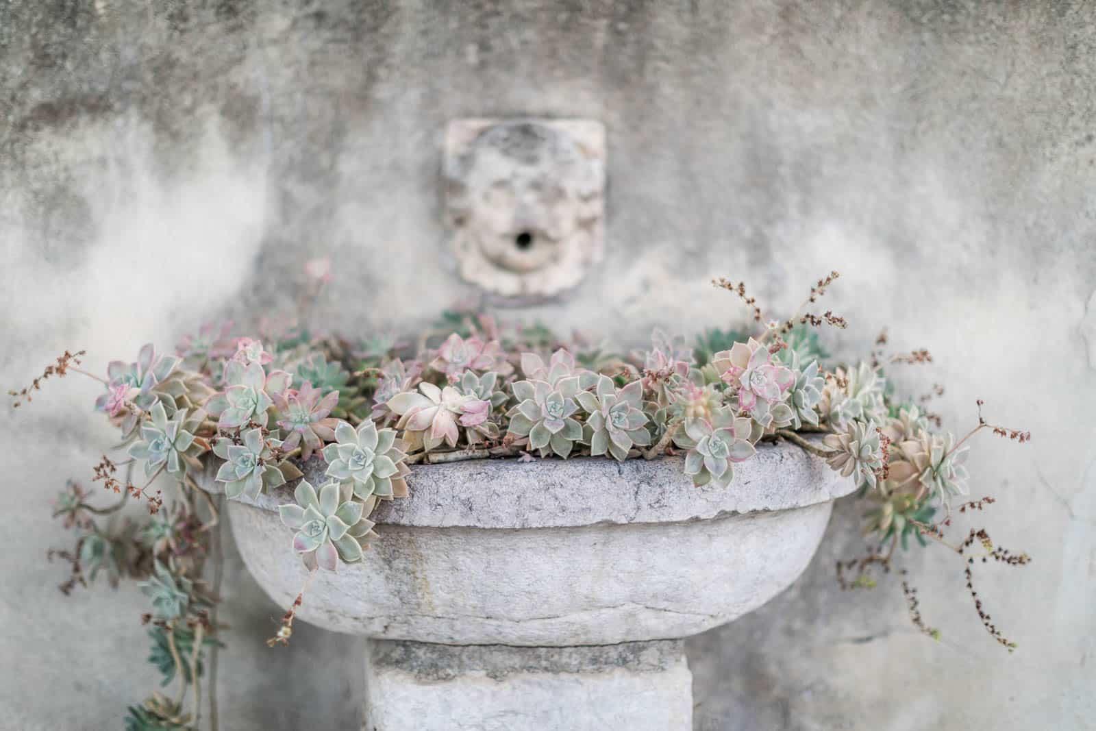 Photographie de Mathieu Dété présentant les détails de l'extérieur de la Villa Brignac