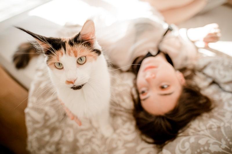 Chat - Séance couple intimité Mathieu Dété