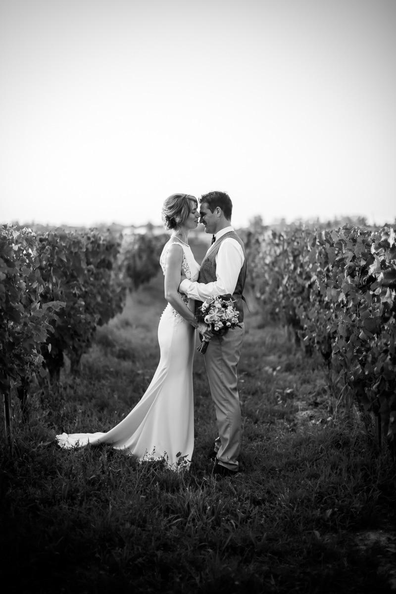 Couple entre les vignes