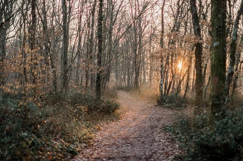Forêt de Bouconne - Photographe mariage portrait Toulouse